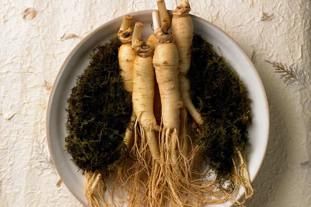 含有されている韓方植物を選ぶ基準はありますか?